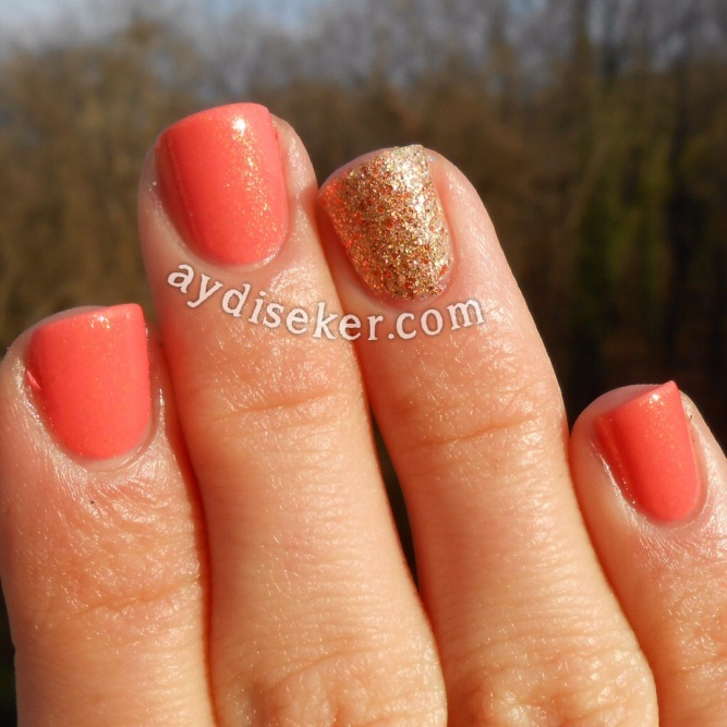 golden rose galaxy 22, golden rose rich colour 06, accent nail mani